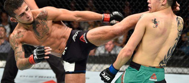 ¿Por qué UFC no está para PC?